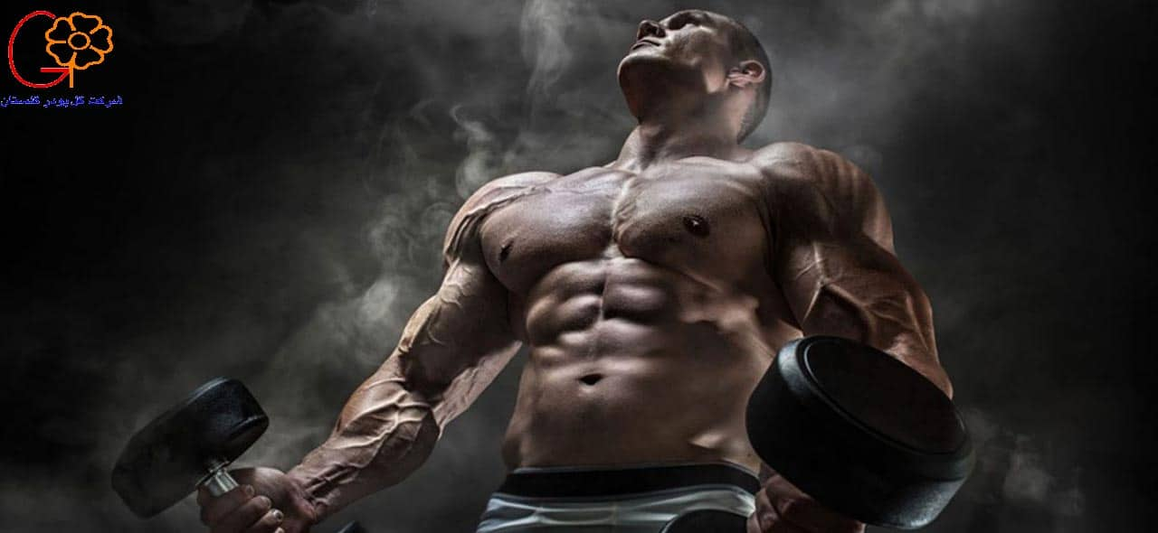 پرورش عضلات بدن