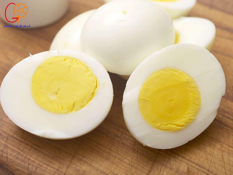 تخم مرغ کامل در رژیم غذایی