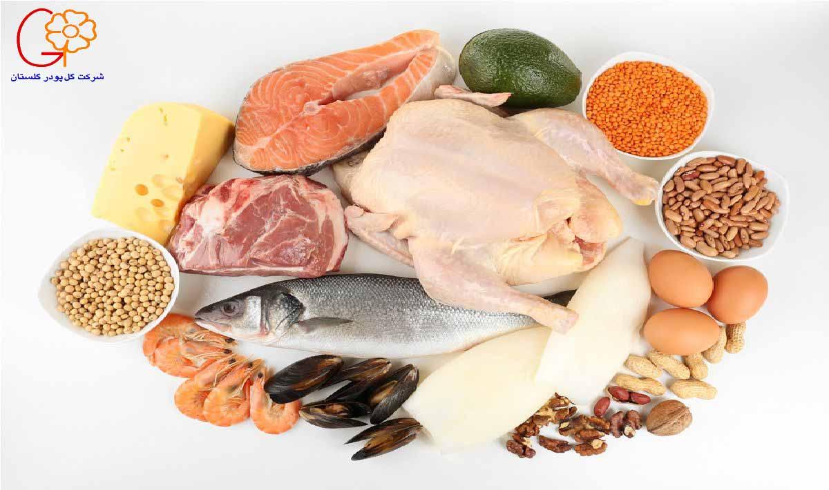 پروتئین دریایی و حبوبات برای عضله سازی