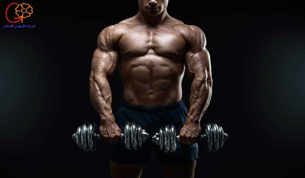چگونه عضلاتی حجیم داشته باشیم